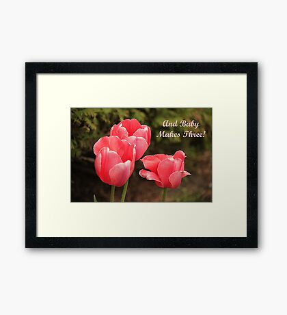 And Baby Makes Three Framed Print