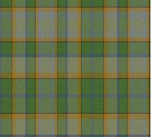 02578 Tulare County, California E-fficial Fashion Tartan Fabric Print Iphone Case by Detnecs2013