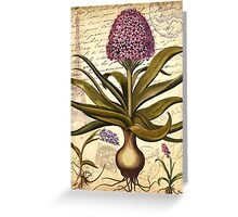 French Botanical & Ephemera - French Script - Vintage Floral Notecard Greeting Card