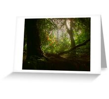 Blaise Woods Greeting Card