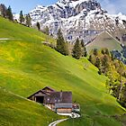 Switzerland in May by vivsworld