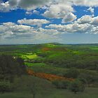 The View From Creech Hill by delros