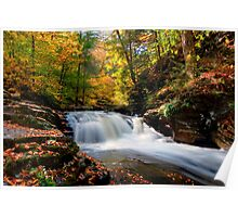 Conestoga Falls On Kitchen Creek in the Fall Poster