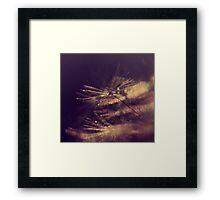 delicate sparkle Framed Print