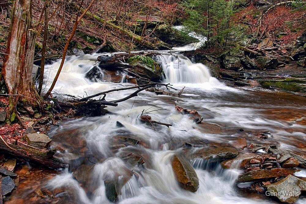 The Elusive Conestoga Waterfall by Gene Walls