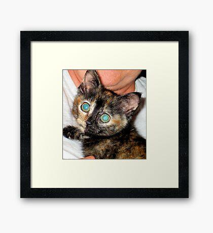 Ellie Baby Framed Print