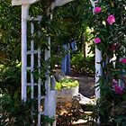 Ranch House Trellis by Loree McComb