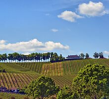 Remich, Luxembourg by NigelSpudCarrot