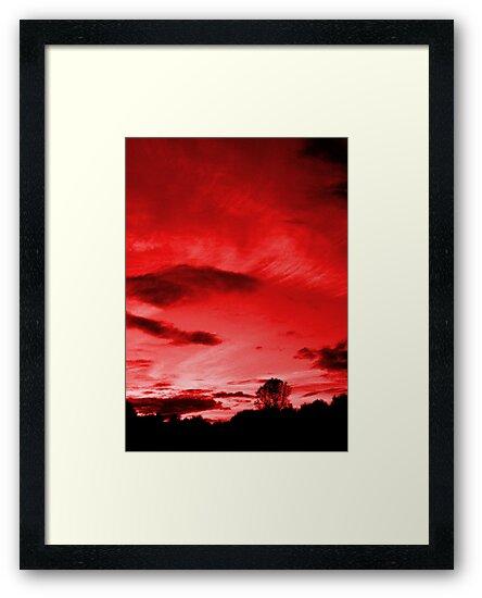 Scarlett Sky by Matt Sibthorpe