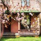 Magnolias by Back Porch by Susan Savad