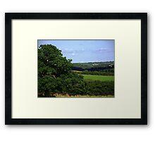 Devon Summer Framed Print