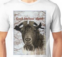 good fortune ahead Unisex T-Shirt