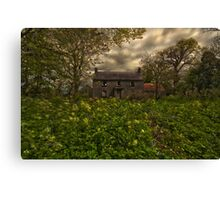 Old irish house Canvas Print