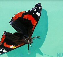 Red Admiral Butterfly by eastcorkpainter