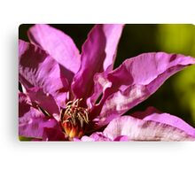 Abstract Purple Clematis Canvas Print