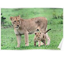 Tsalala mom and cub Poster