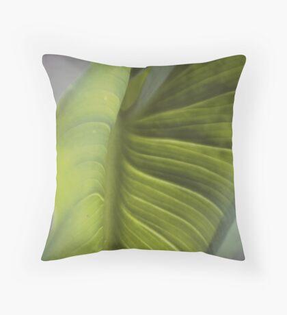 Zantedeschia aethiopica Throw Pillow
