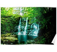 waterfall in the glens of antrim Poster