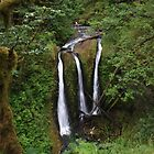 Triple Falls, Columbia River Gorge, Oregon by DArthurBrown