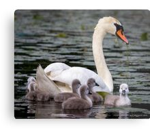 Teaching The Babies to Forage For Food Metal Print