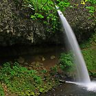 Ponytail Falls, Columbia River Gorge, Oregon by DArthurBrown
