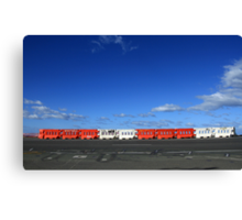 We All Put Up Barriers Canvas Print