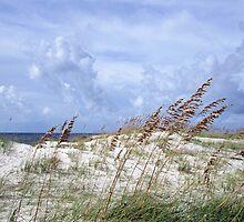 Crossing the Last Dune by MarjorieB