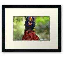 Sing a Song ! Framed Print