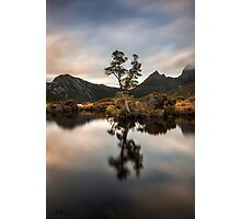 Kingly Reflections Photographic Print