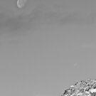 Daylight Moon by Gëzim Geci