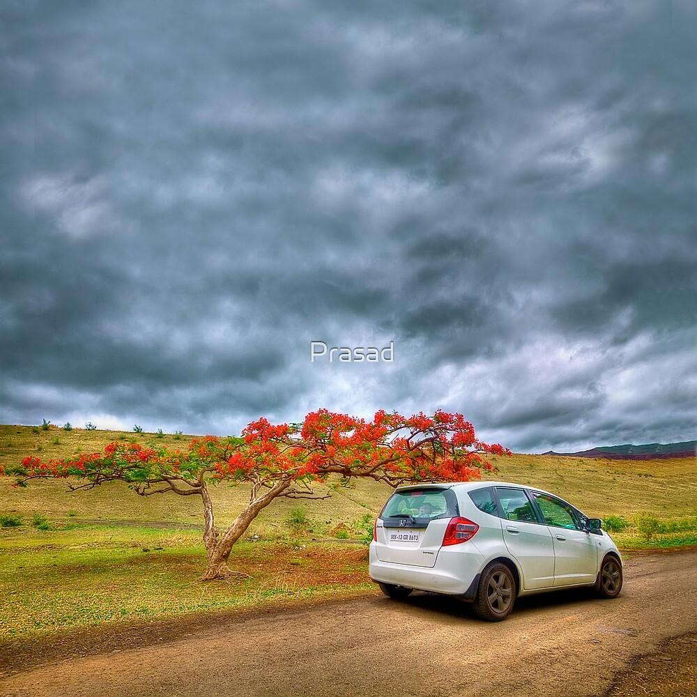 End of Summer #2 by Prasad