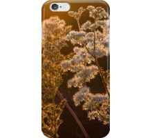 Golden back-lit plants at sunrise - Photography. iPhone Case/Skin