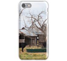 Black cattle iPhone Case/Skin
