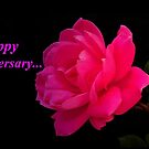 Happy Anniversary...greeting card by RoseMarie747