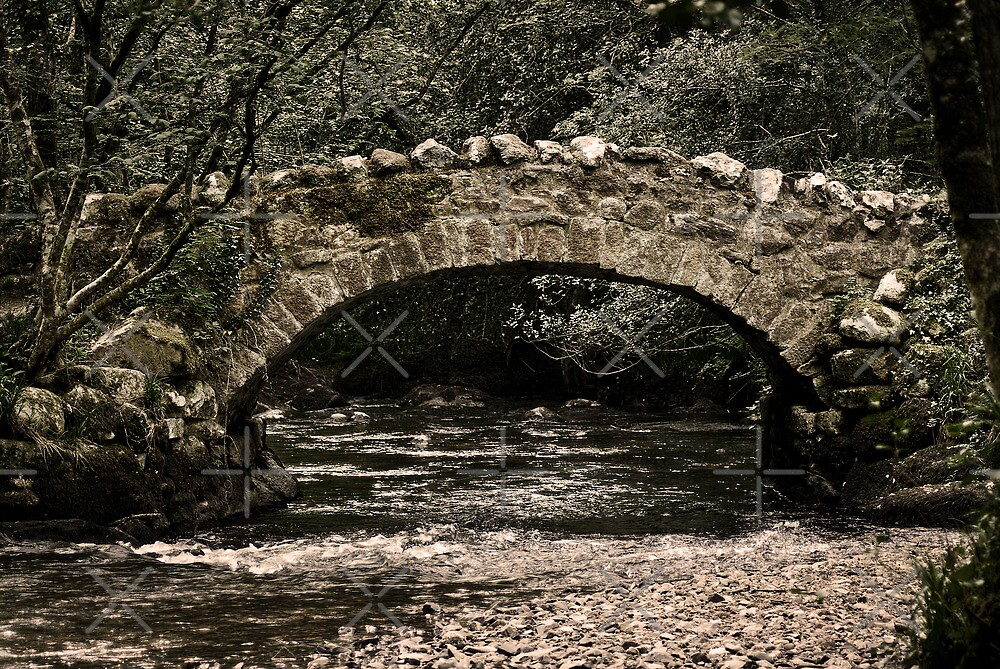 Teign Bridge by Country  Pursuits