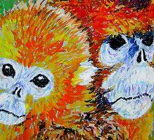 Sichuan Golden Monkeys China by David Olson