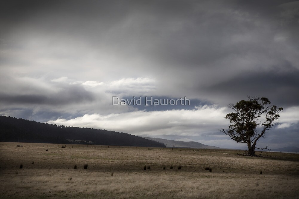 The Rain Clears by David Haworth