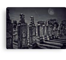 Moonlit slumber Canvas Print