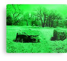 Neon Green Boulders Metal Print