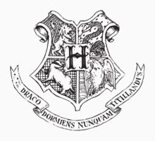 Hogwarts School of Witchcraft and Wizardry  by Alkasen