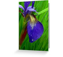 Splendor In The Grass Greeting Card