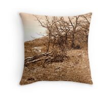 Sepia Landscape Throw Pillow