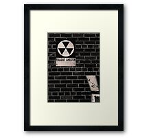 Fallout Framed Print