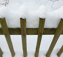 fence by globeboater