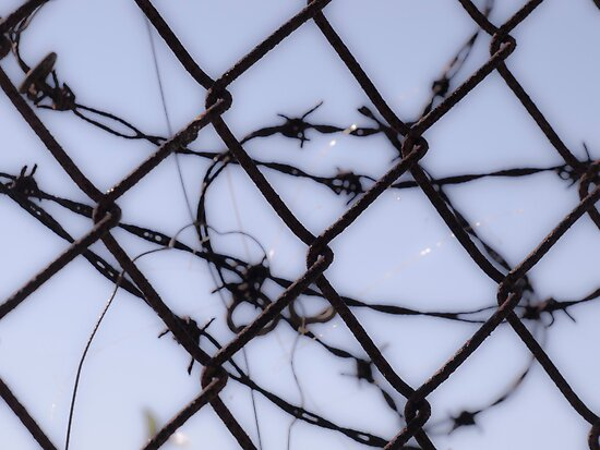 Protect Your Barbed Wire by Jason Lee Jodoin
