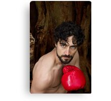Shane V - The Fighter Canvas Print