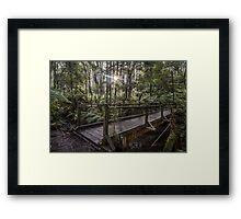 Long Bridge Framed Print