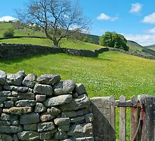 Little Wooden Gate (Yorkshire Dales) by Sue Knowles