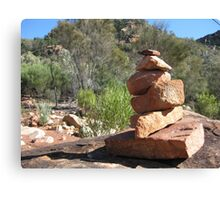 Bushwalker's sculpture Canvas Print