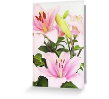 Pink liliums Greeting Card